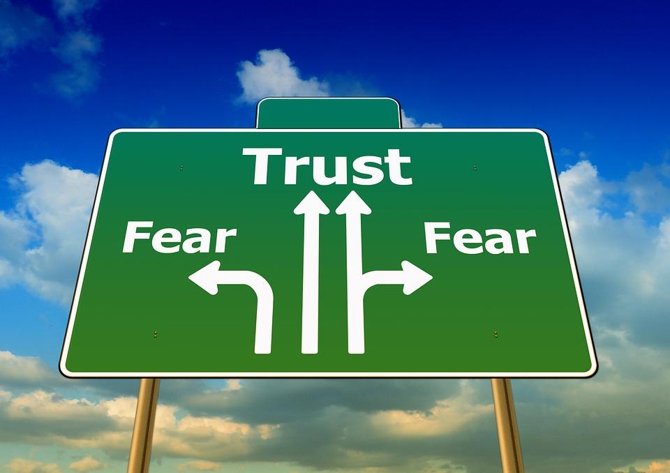 confiance domaine seo