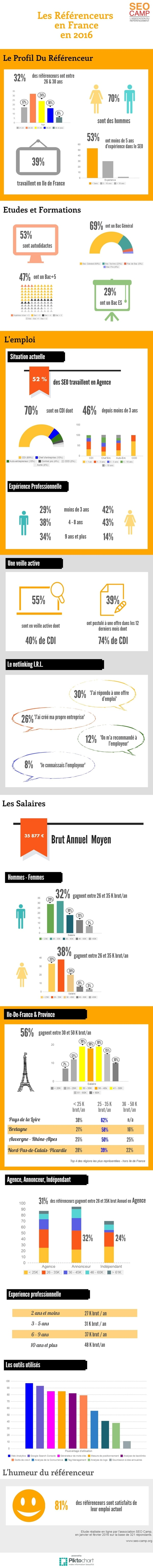 infographie consultant seo